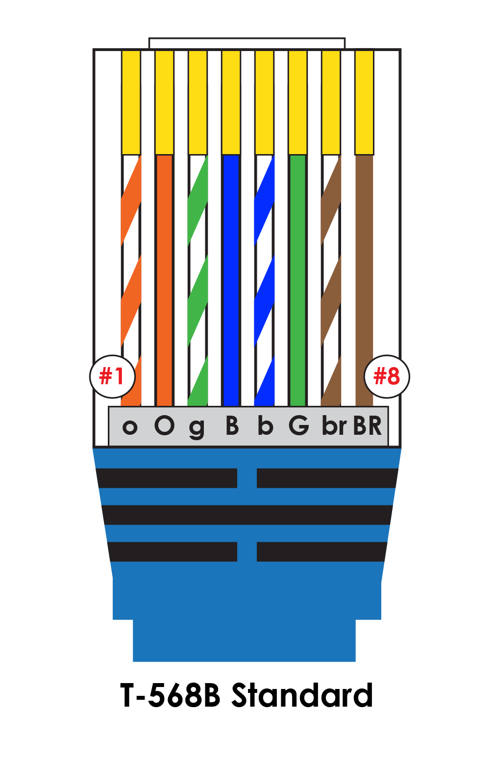 With Cat 5 Rj45 Wiring Another Blog About Diagram Baja Motorsports Ether Crossover Cable Ethernet